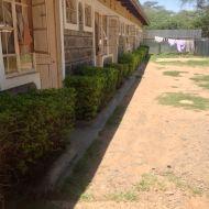 4 DSem Acacia Accommodation