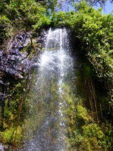 Waterfalls Inn