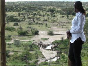 Eco-Tourism in Kenya