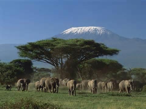 Mt. Kenya National Park