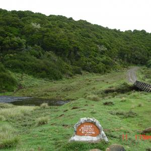Fishing Streams in The Aberdare National Park Photo