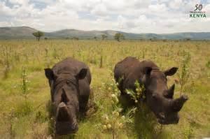 Sibiloi National Park Kenya