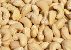 Cashew Nuts Farming in Kenya