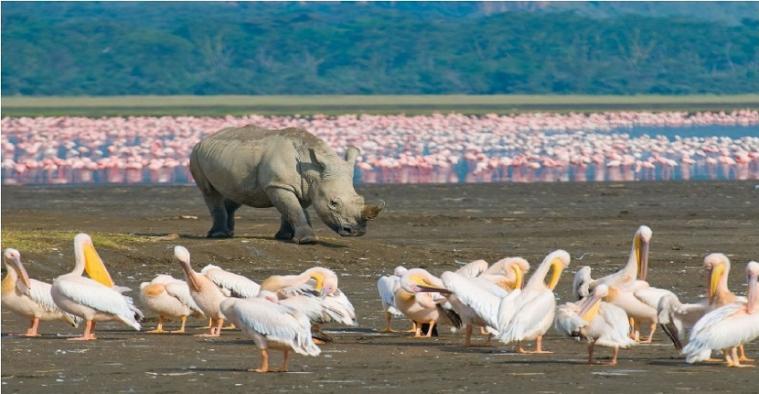 Lakes in Kenya - Rivers in Kenya