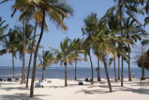 Tourist Attractions in Kenya - Malindi