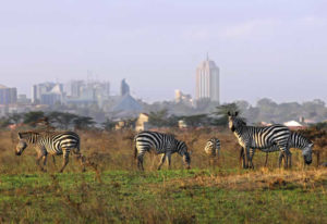 Tourist Attractions in Kenya - Nairobi National Park