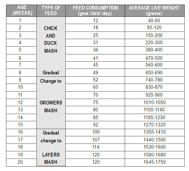 Poultry Farming in Kenya - Average feed consumption expected with the corresponding weights