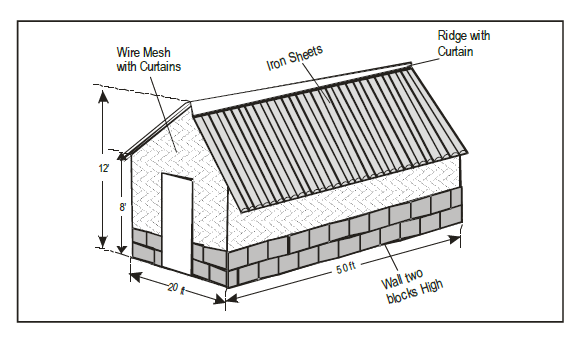 Poultry Farming in Kenya - Layers House With Dimensions For 500 Layers