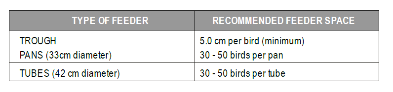Poultry Farming in Kenya - Recommended feeder space