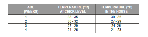 Poultry Farming in Kenya - Temperatures
