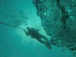 Blue Fin Diving