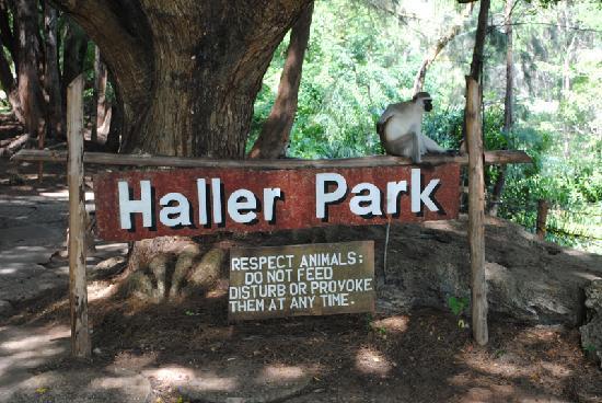 Haller Park - Haller Wildlife Park