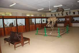 Hyrax Hill Museum