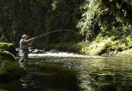Kenya Fly fishers club