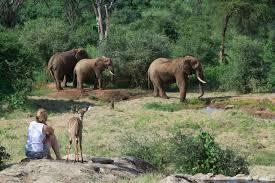 Namunyak Wildlife Conservation